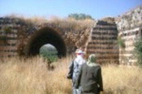 Article : Palestine : Nos jours heureux