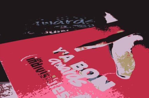 Article : Y'a Bon Awards – Quand le racisme se classe