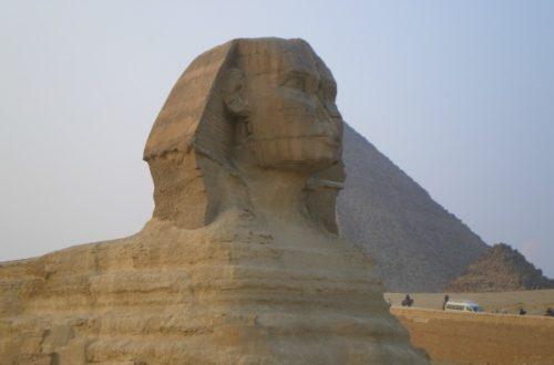 Article : Tunisie/Egypte : la diplomatie des passeports verts
